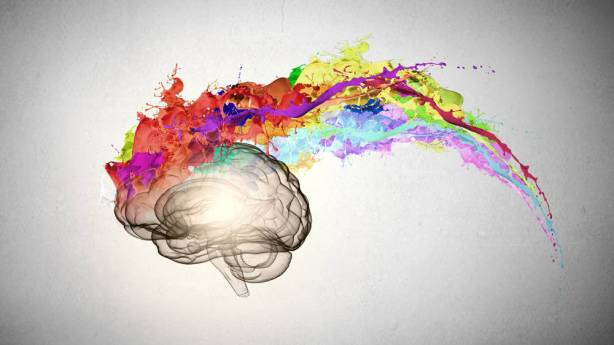 brain-with colors